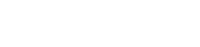 Wild Killer Whale Adoption Program